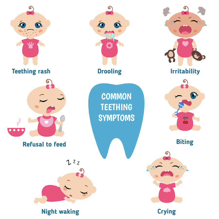 Top 7 Signs Of Teething And Remedies To Sooth The Teething