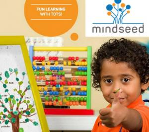 Mindseed Preschool & Daycare