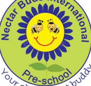 NECTAR BUDS PRIMARY SCHOOL & DAYCARE