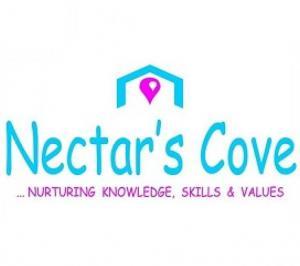 NECTAR BUDS PRIMARY SCHOOL & DAYCARE